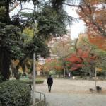 東郷元帥記念公園(周辺)