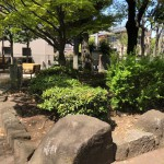 御殿山公園(周辺)